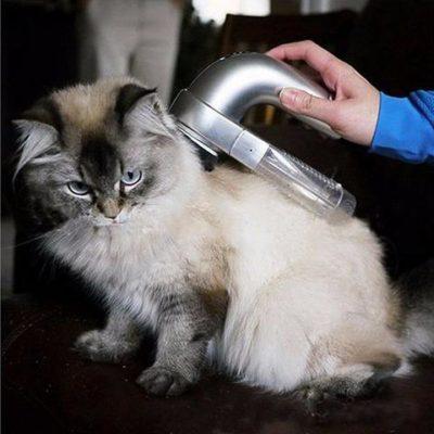 Electric Portable Pet Clean Vacuum