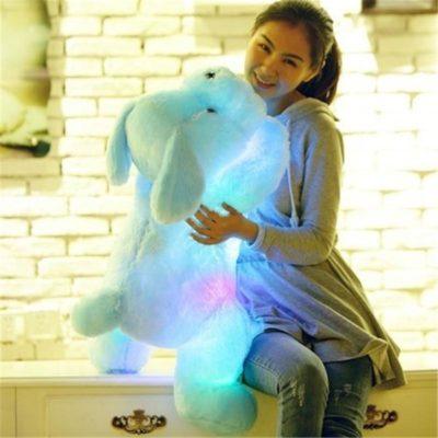 Luminous Dog Plush