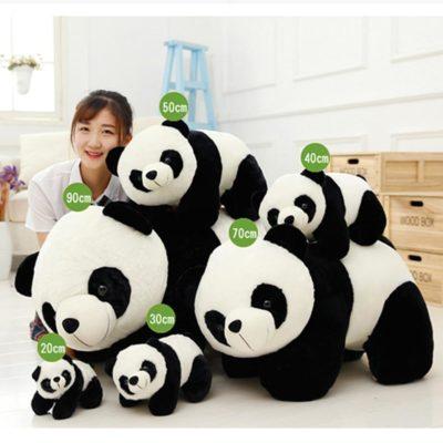 Beautiful Panda Plus