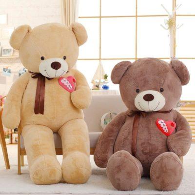 Pretty Teddy Bear Wi